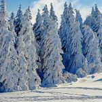rever de neige